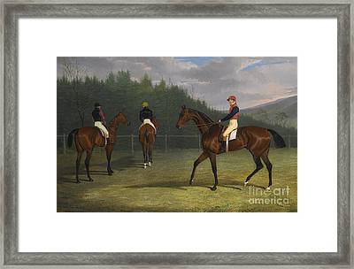 British The Start Of The Goodwood Gold Cup Framed Print by John Frederick Herring