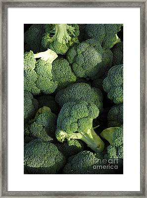 Broccoli In The Perfect Light Framed Print by Micah May
