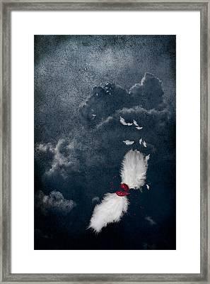 Broken Framed Print by Maggie Terlecki