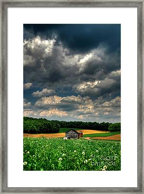 Brooding Sky Framed Print by Lois Bryan