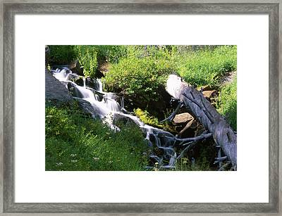 Brook And Deadfall Framed Print by Soli Deo Gloria Wilderness And Wildlife Photography