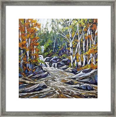 Brook Traversing Wood Framed Print by Richard T Pranke
