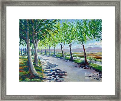 Brookside Road Framed Print by Vanessa Hadady BFA MA