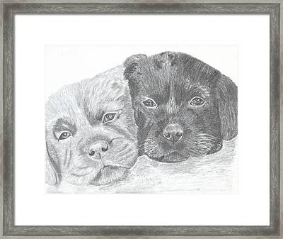 Brothers Framed Print by DebiJeen Pencils