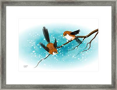 Brown Swallows In Winter Framed Print by John Wills