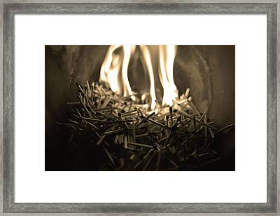 Brushfire 8 Framed Print by Sumit Mehndiratta