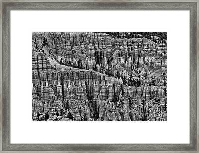 Bryce A Lot To Look At Framed Print by Blake Richards