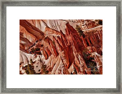 Bryce Canyon National Park Horse Trail Framed Print by Blake Richards