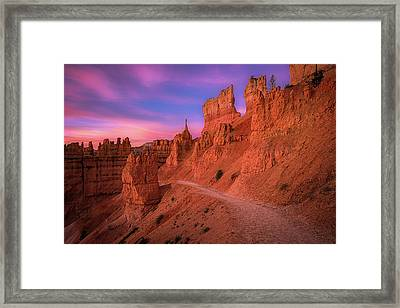 Bryce Trails Framed Print by Edgars Erglis