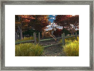 Buck Jumping Framed Print by Mary Almond