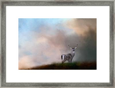 Buck On The Hill Framed Print by Jai Johnson