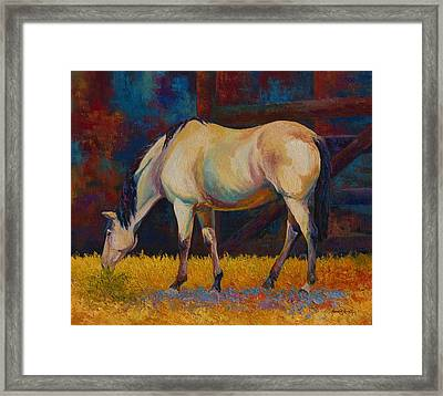 Buckskin Framed Print by Marion Rose
