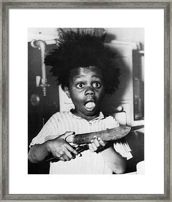 Buckwheat Hair Framed Print by Buckwheat