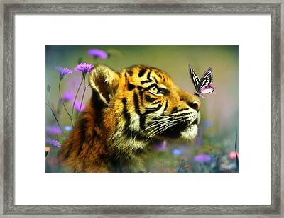 Buddy And The Butterfly Framed Print by Trudi Simmonds