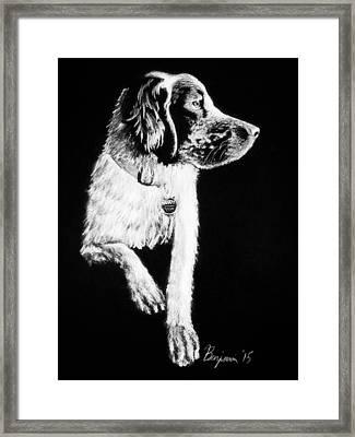 Buddy Framed Print by Benjamin Gassmann