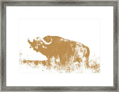 Buffalo 4 Framed Print by Joe Hamilton