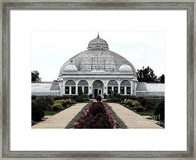 Buffalo And Erie County Botanical Gardens Ink Sketch Effect Framed Print by Rose Santuci-Sofranko