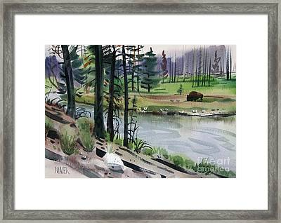 Buffalo In Yellowstone Framed Print by Donald Maier