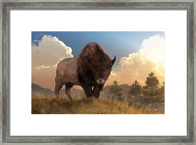 Buffalo Sunset Framed Print by Daniel Eskridge