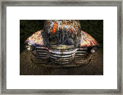 Bug Eyes Framed Print by Jerry Golab