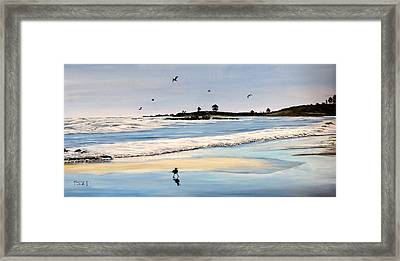 Bull Beach Framed Print by Marilyn McNish