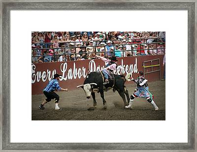 Bull Fighters At Work Framed Print by Melisa Meyers