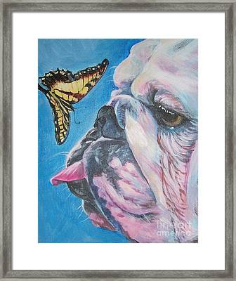 Bulldog And Butterfly Framed Print by Lee Ann Shepard