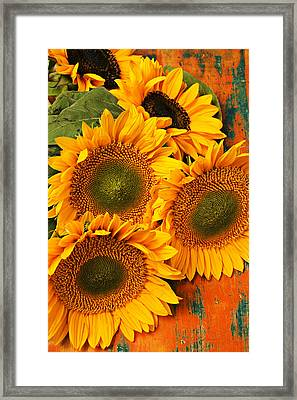 Bunch Of Sunflowers Framed Print by Garry Gay