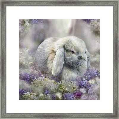 Bunny In Easter Lilacs Framed Print by Carol Cavalaris