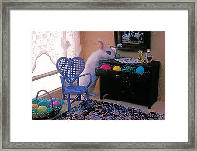 Bunny In Small Room Framed Print by Garry Gay