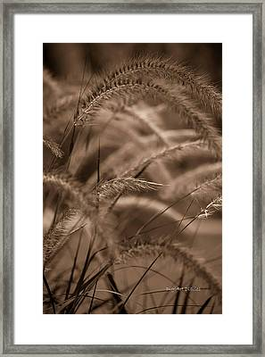 Burgundy Giant Framed Print by DigiArt Diaries by Vicky B Fuller
