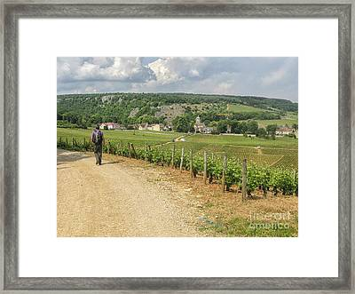 Burgundy Walking Framed Print by Patricia Hofmeester
