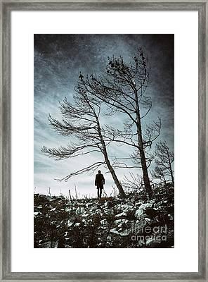 Burnt Land Framed Print by Carlos Caetano