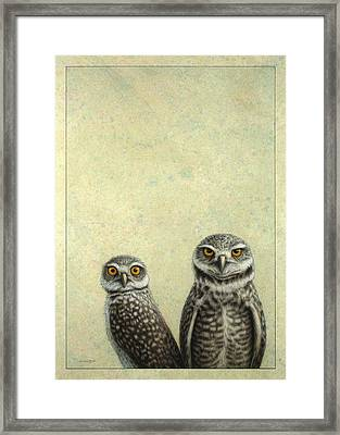 Burrowing Owls Framed Print by James W Johnson