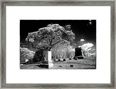 Bury Me Under A Tree Framed Print by John Rizzuto
