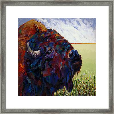 Buttercup Framed Print by Bob Coonts