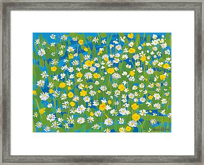Buttercups And Daisies Framed Print by Sarah Gillard