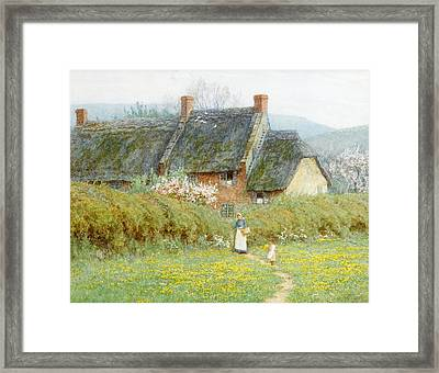 Buttercups Framed Print by Helen Allingham