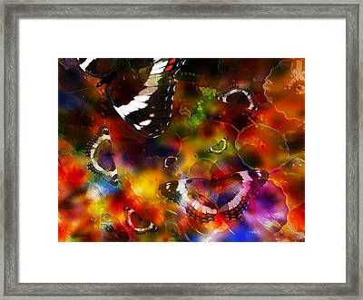 Butterflies Get Their Colors Framed Print by Stuart Turnbull