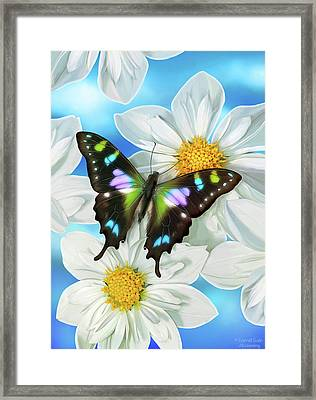 Butterfly 2 Framed Print by JQ Licensing