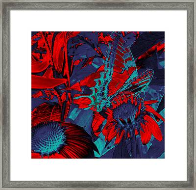 Butterfly Abstract Framed Print by Patricia Motley