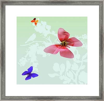 Butterfly Floral Framed Print by Debra     Vatalaro