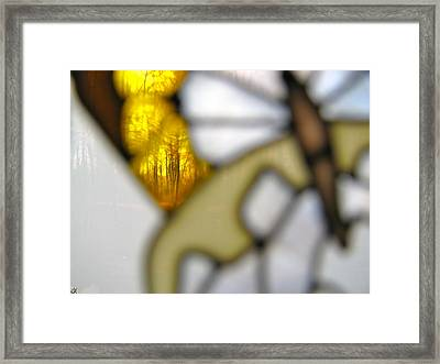 Butterfly Forest  B Framed Print by Debra     Vatalaro