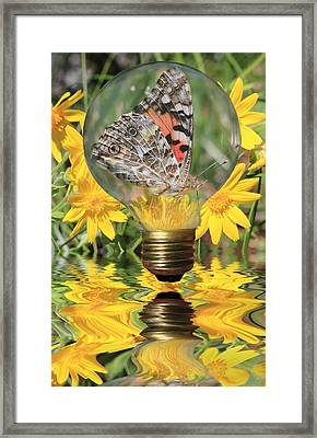 Butterfly In A Bulb II Framed Print by Shane Bechler