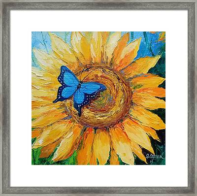 Butterfly On Sunflower Framed Print by Olha Darchuk
