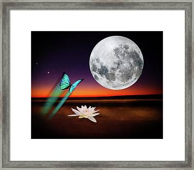 Butterfly's Serenade Framed Print by Kathy Franklin