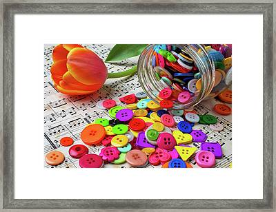 Buttons And Tulip Framed Print by Garry Gay