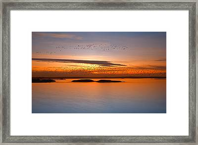 By Sunset Framed Print by Piotr Krol (bax)