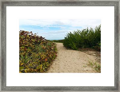 By The Inlet Framed Print by Michelle Wiarda
