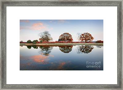 By The Lake Framed Print by Svetlana Sewell